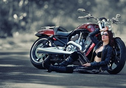 Harley Davidson and Asian Model