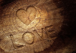 Love Quote On Wood HD