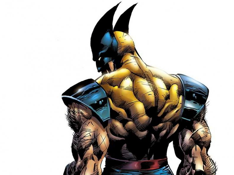 Wolverine Download Hd Wallpapers And Free Images
