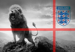 3 Lions Football