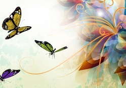 Butterflies Wallpapers