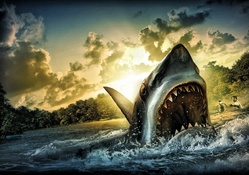 Shark Attack (HDR)