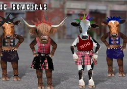 The Cow Dancers Union (hahaha)