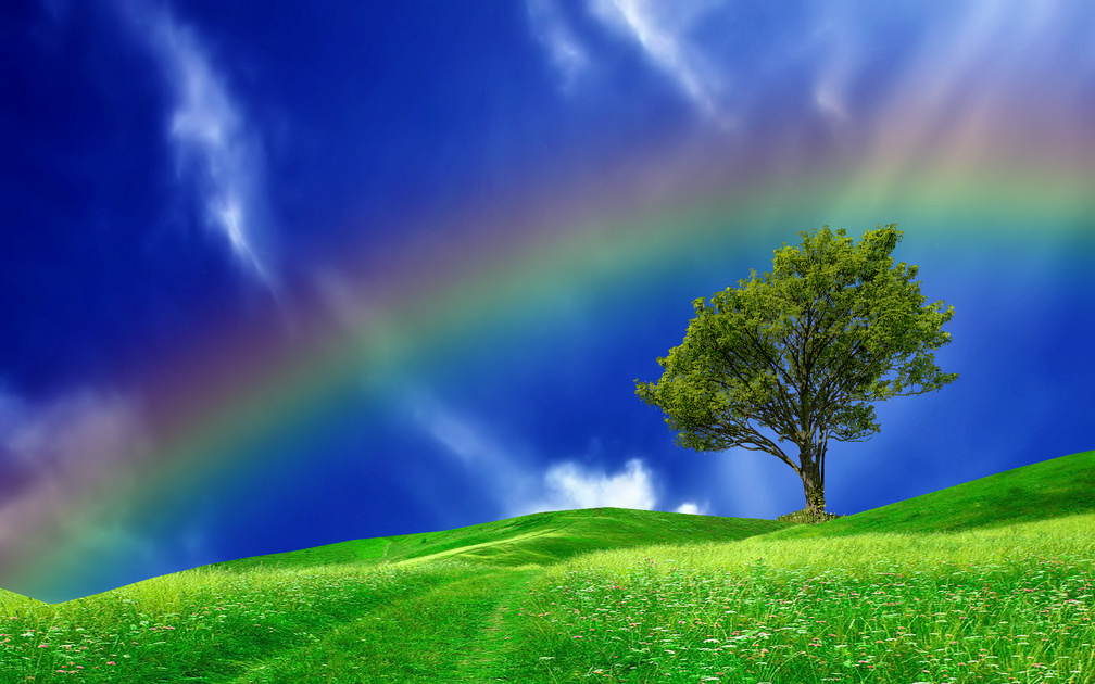 Nature Wallpapers Rainbows Wallpapers Download Hd Wallpapers And Free Images