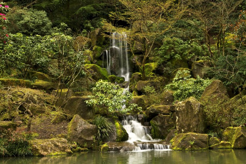 Japanese Garden Waterfall Portland Oregon Download Hd Wallpapers And Free Images