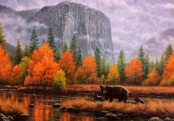 ✫Misty Yosemite in Fall✫
