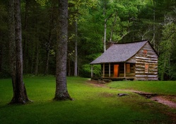 Forest Cabin, Smoky Mountains