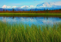 river in beautiful denali park in alaska