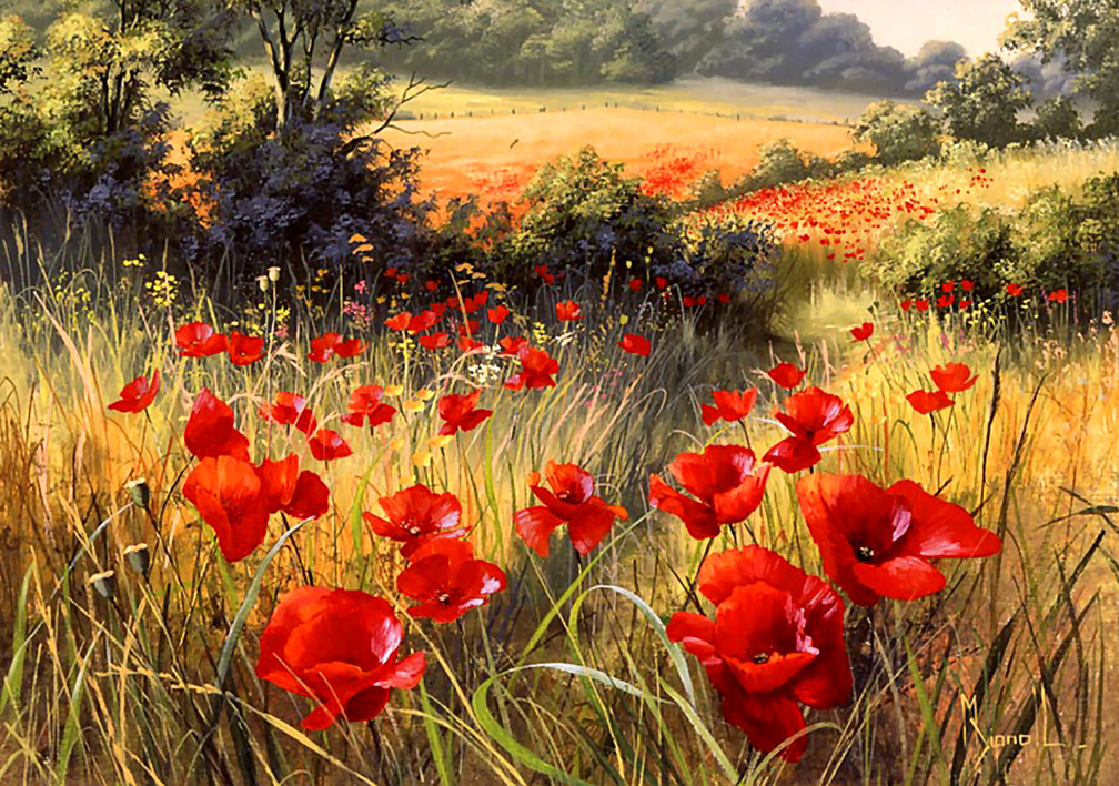 Nature Wallpapers Flowers Wallpapers Download Hd Wallpapers And Free Images