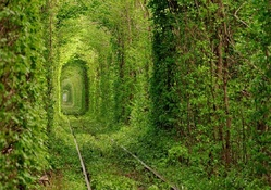 Tunnel of Love _ Ukraine