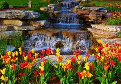 Waterfalls and Tulips