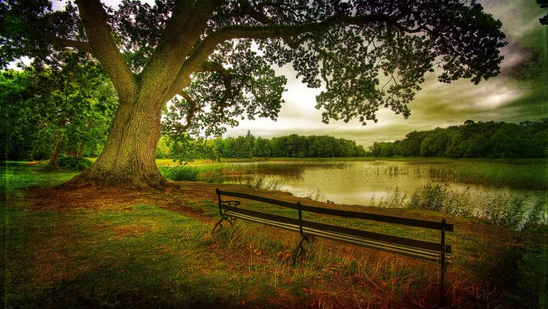 bench_on_a_lakeshore_hdr.jpg