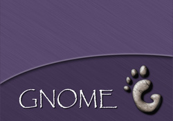 Gnome _ Brushed Purple