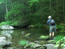 Fly Fishing in N.Carolina
