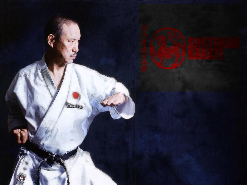 Shotokan Karate Download HD Wallpapers And Free Images