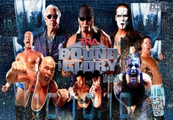 TNA Bound For Glory 10_10_10