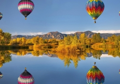 Reflection Of Hot Air Balloons
