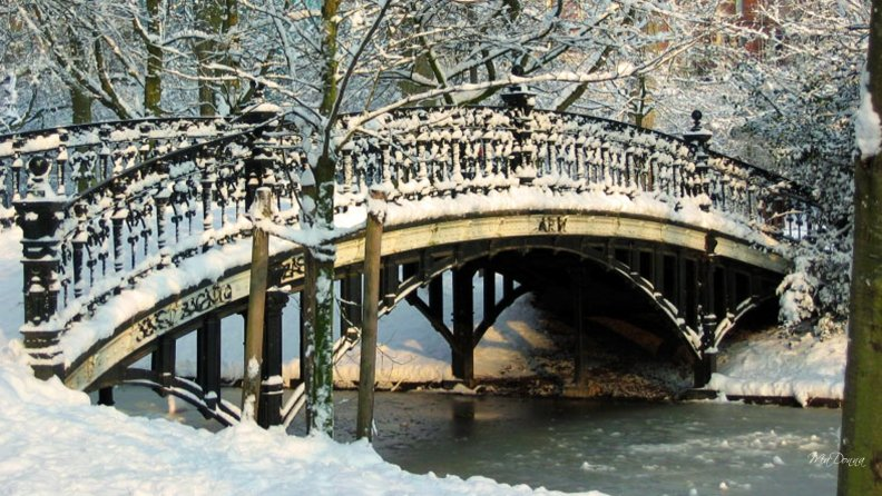 frozen_bridge.jpg