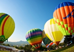colorful hot air balloons taking off