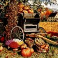 AUTUMN COUNTRY LIFE
