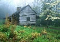 cottage in the cloud forest