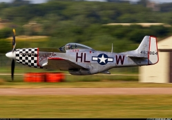 P51 Twilight Tear