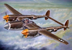 World War II Combat Aircraft (P_38 Lockheed Lightning)