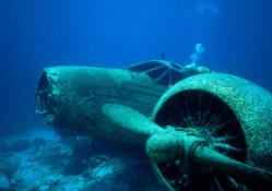 Sunken Plane at Aruba