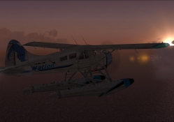 FSX Dehavalin Beaver Sunset