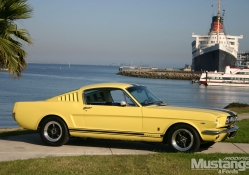 1966_Ford_Mustang Fastback