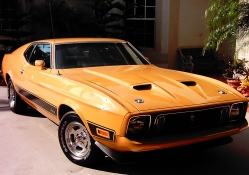 Awesome Muscle Car