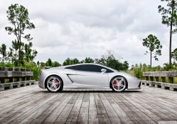 lambroghini gallardo