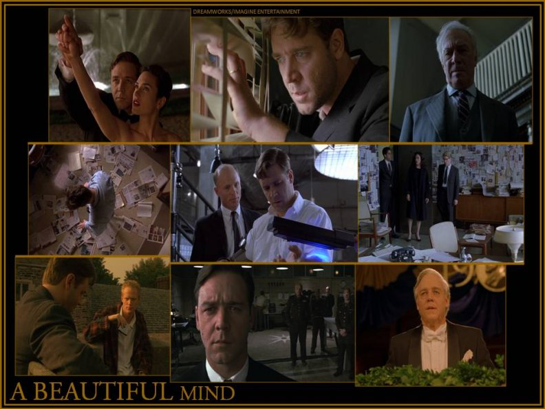 ron howards a beautiful mind essay
