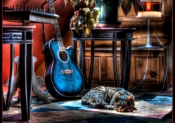 CAT & GUITAR HDR