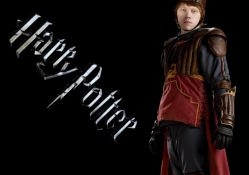 Ron, Harry Potter