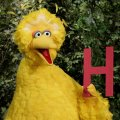 Big Bird _ Sesame Street