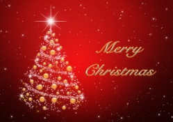 Marry Christmas To You All