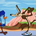 Roadrunner and Coyote