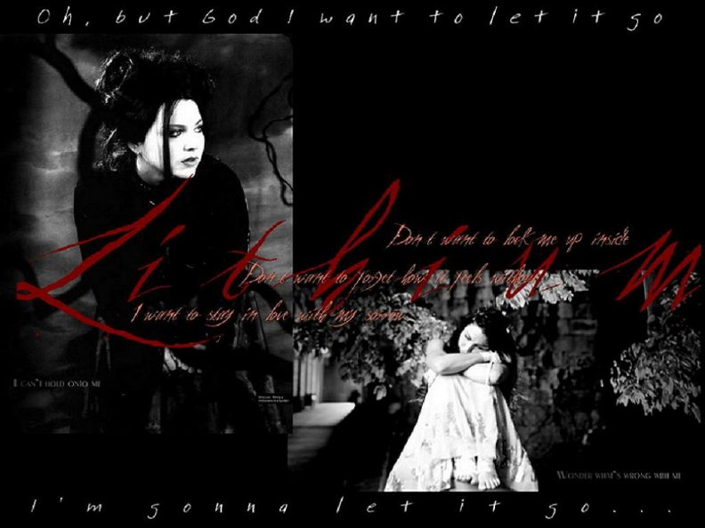evanescence_collage.jpg