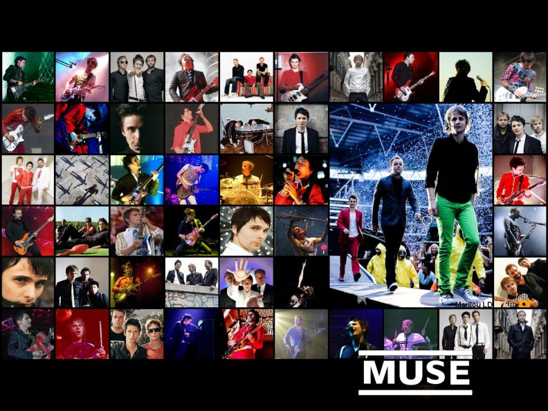 muse_collage.jpg