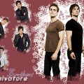 Stefan and Damon