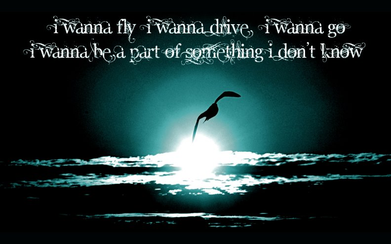 I wanna fly... / Miley Cyrus