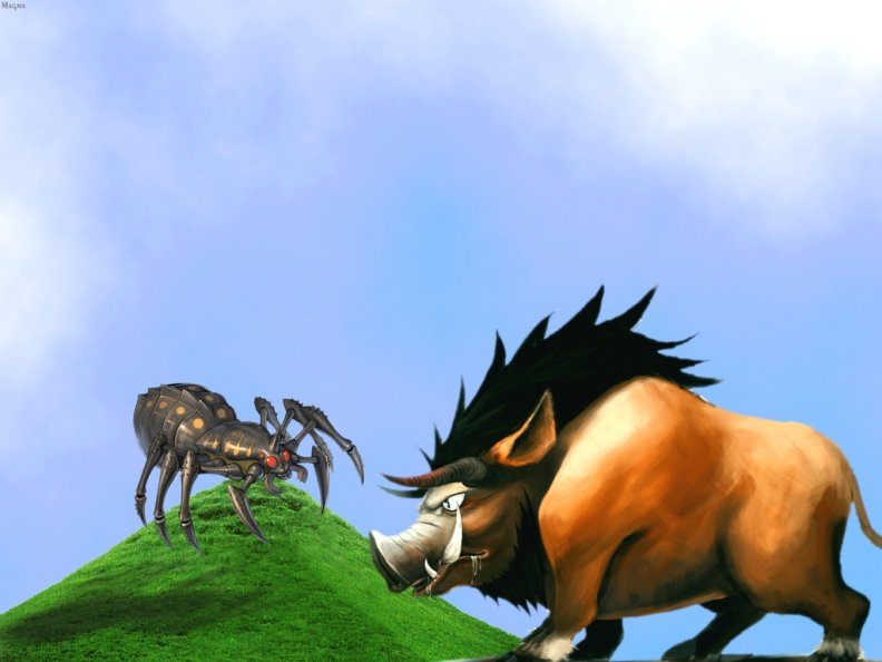 spider_against_boar.jpg