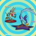 THE ROADRUNNER&WILE COYOTE