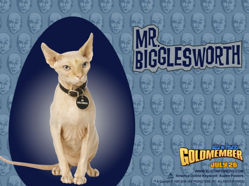 mr_bigglesworth.jpg