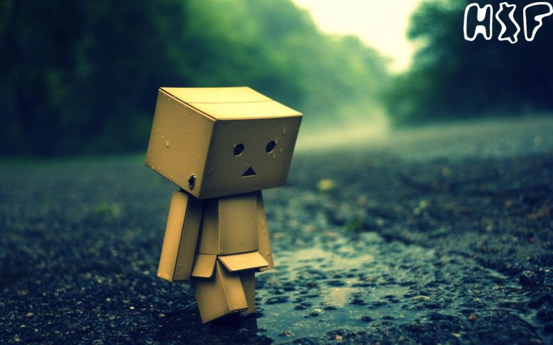 danbo_alonecheer_him_up.jpg