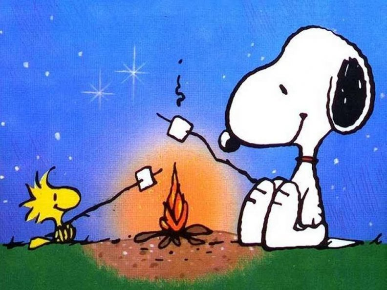 snoopy_and_woodstock_camping.jpg