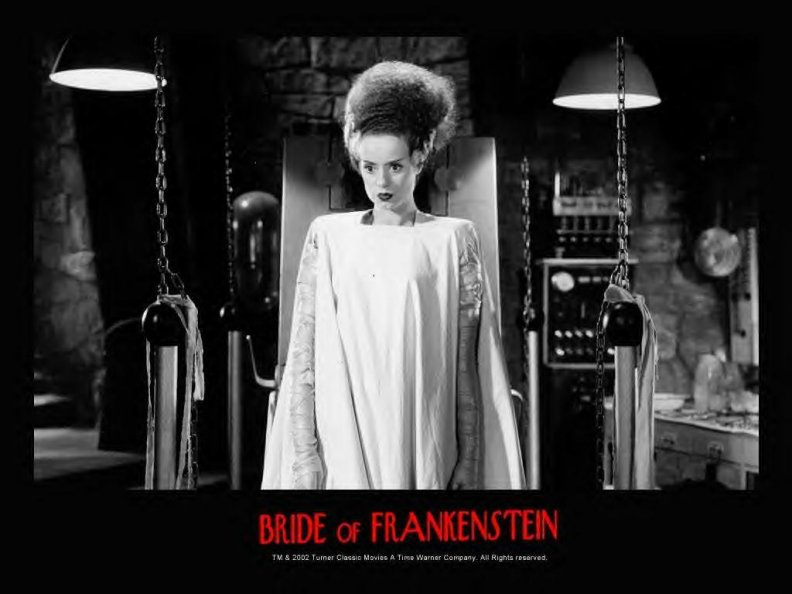 bride_of_frankenstien.jpg
