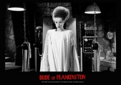 Bride Of Frankenstien