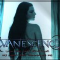Evanescence _ Open Door
